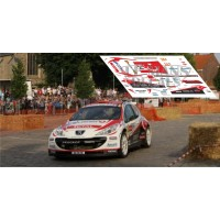 Peugeot 207 S2000 - IRC Ypres 2010 nº24