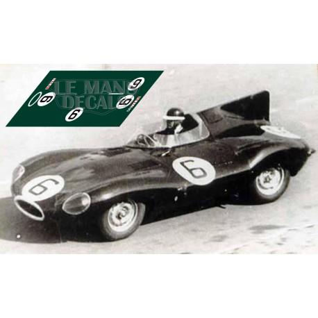 Jaguar D Type - Le Mans 1955 nº6