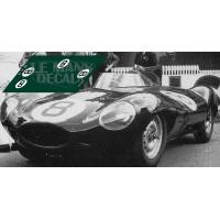 Jaguar D Type - Le Mans 1955 nº8