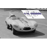 Jaguar D Type - Le Mans 1955 nº9