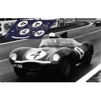 Jaguar D Type - Le Mans 1956 nº4