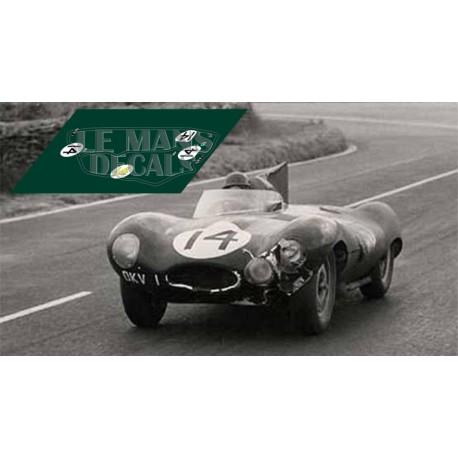 Jaguar D Type - Le Mans 1954 nº14
