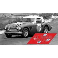 Austin Healey 3000 - Targa Florio 1965 nº108