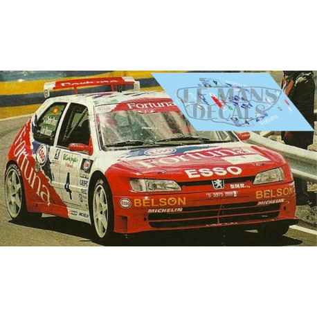 Peugeot 306 - Rally Canarias 2000 nº4