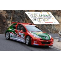 Peugeot 207 S2000 - Rally IRC Canarias 2012 nº9