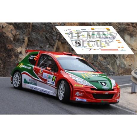 Peugeot 207 S2000 - Rally IRC Canarias 2012 nº9